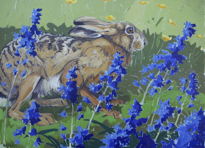 Hare and Bluebells